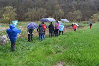 08_Auf_dem_Weg_zum_Naturschutzgebiet_Kirschenwiesen_GS